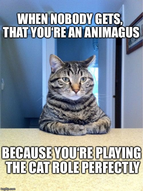 Take A Seat Cat Meme | WHEN NOBODY GETS, THAT YOU'RE AN ANIMAGUS BECAUSE YOU'RE PLAYING THE CAT ROLE PERFECTLY | image tagged in memes,take a seat cat | made w/ Imgflip meme maker