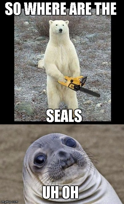 uh oh indeed | SO WHERE ARE THE SEALS UH OH | image tagged in bear,funny,memes,latest,uh oh,awkward moment sealion | made w/ Imgflip meme maker