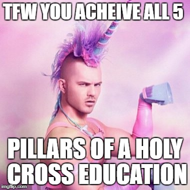 Unicorn MAN Meme | TFW YOU ACHEIVE ALL 5 PILLARS OF A HOLY CROSS EDUCATION | image tagged in memes,unicorn man | made w/ Imgflip meme maker
