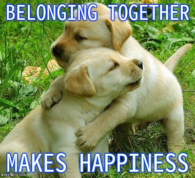 Puppy I love bro | BELONGING TOGETHER MAKES HAPPINESS | image tagged in puppy i love bro | made w/ Imgflip meme maker