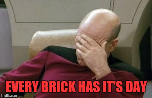 Captain Picard Facepalm Meme | EVERY BRICK HAS IT'S DAY | image tagged in memes,captain picard facepalm | made w/ Imgflip meme maker