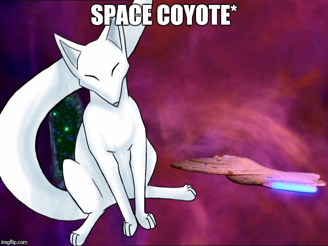 SPACE COYOTE* | made w/ Imgflip meme maker