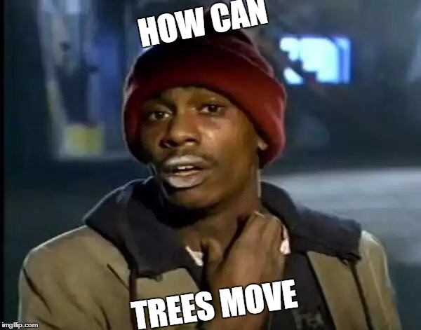 Y'all Got Any More Of That Meme | HOW CAN TREES MOVE | image tagged in memes,y'all got any more of that | made w/ Imgflip meme maker