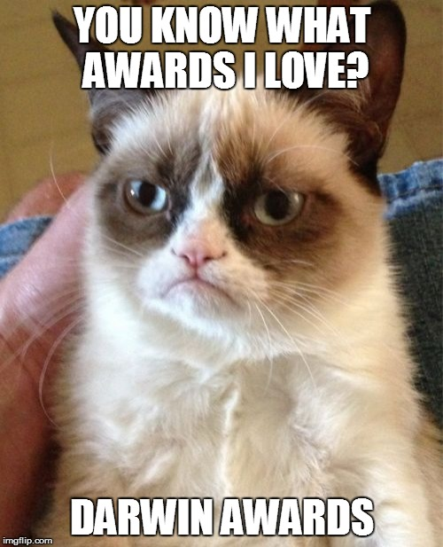 Grumpy Cat Meme | YOU KNOW WHAT AWARDS I LOVE? DARWIN AWARDS | image tagged in memes,grumpy cat | made w/ Imgflip meme maker