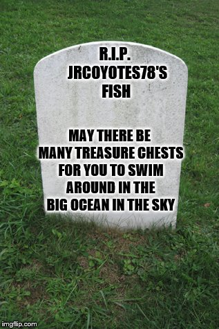 R.I.P.  JRCOYOTES78'S FISH MAY THERE BE MANY TREASURE CHESTS FOR YOU TO SWIM AROUND IN THE BIG OCEAN IN THE SKY | made w/ Imgflip meme maker