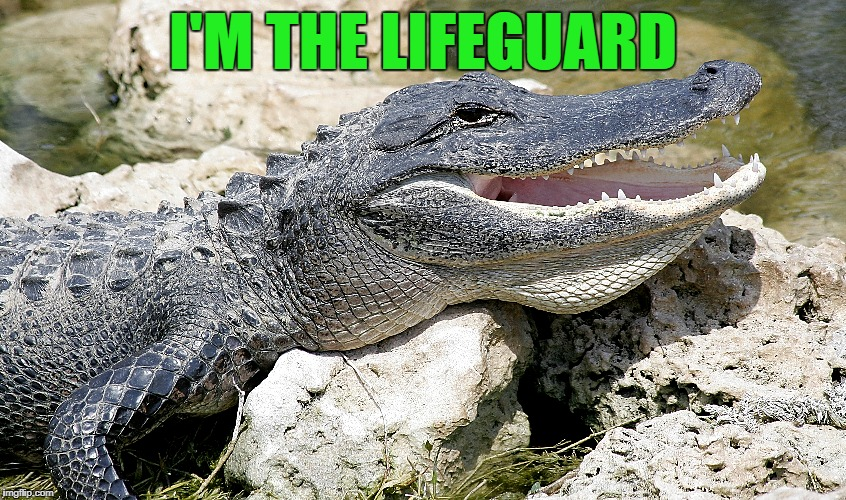 I'M THE LIFEGUARD | made w/ Imgflip meme maker