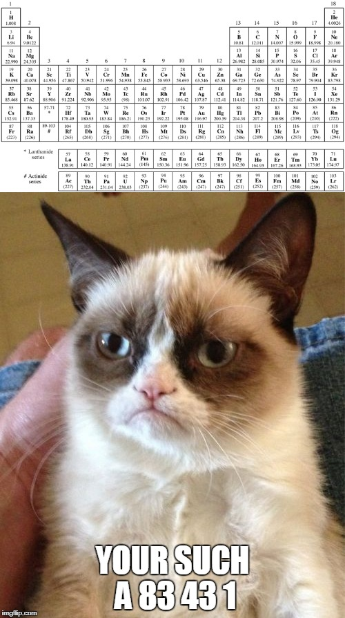 periodic grumpy cat | YOUR SUCH A 83 43 1 | image tagged in grumpy cat,periodic table,pun,meme | made w/ Imgflip meme maker