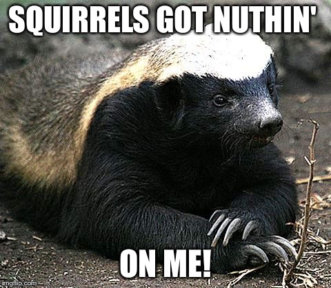 SQUIRRELS GOT NUTHIN' ON ME! | made w/ Imgflip meme maker