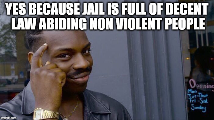Roll Safe Think About It Meme | YES BECAUSE JAIL IS FULL OF DECENT LAW ABIDING NON VIOLENT PEOPLE | image tagged in memes,roll safe think about it | made w/ Imgflip meme maker