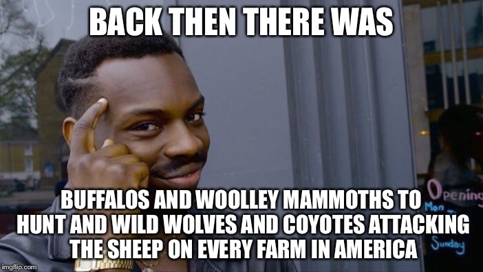 Roll Safe Think About It Meme | BACK THEN THERE WAS BUFFALOS AND WOOLLEY MAMMOTHS TO HUNT AND WILD WOLVES AND COYOTES ATTACKING THE SHEEP ON EVERY FARM IN AMERICA | image tagged in memes,roll safe think about it | made w/ Imgflip meme maker
