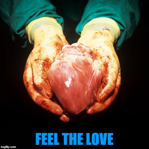FEEL THE LOVE | made w/ Imgflip meme maker