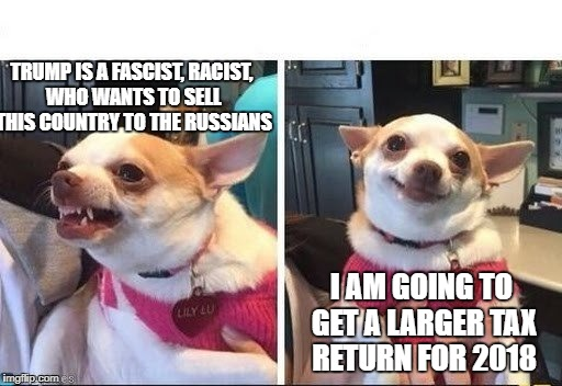 TRUMP IS A FASCIST, RACIST, WHO WANTS TO SELL THIS COUNTRY TO THE RUSSIANS I AM GOING TO GET A LARGER TAX RETURN FOR 2018 | image tagged in angry happy chihuahua | made w/ Imgflip meme maker