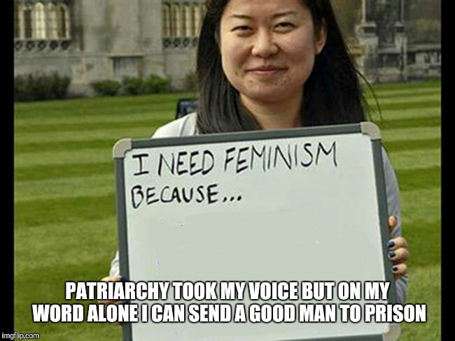 I need feminism because | PATRIARCHY TOOK MY VOICE BUT ON MY WORD ALONE I CAN SEND A GOOD MAN TO PRISON | image tagged in i need feminism because | made w/ Imgflip meme maker