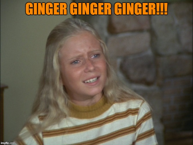 GINGER GINGER GINGER!!! | made w/ Imgflip meme maker
