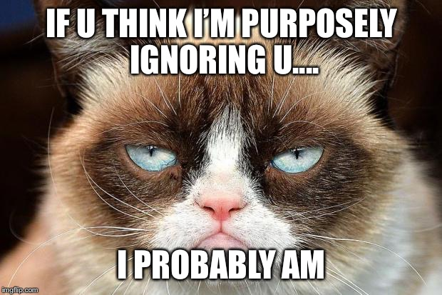 Grumpy Cat Not Amused Meme | IF U THINK I'M PURPOSELY IGNORING U.... I PROBABLY AM | image tagged in memes,grumpy cat not amused,grumpy cat | made w/ Imgflip meme maker