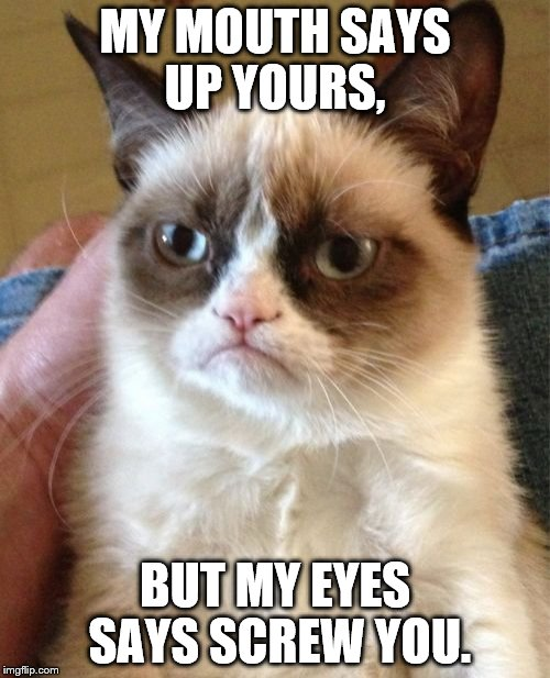 Grumpy Cat Meme | MY MOUTH SAYS UP YOURS, BUT MY EYES SAYS SCREW YOU. | image tagged in memes,grumpy cat | made w/ Imgflip meme maker