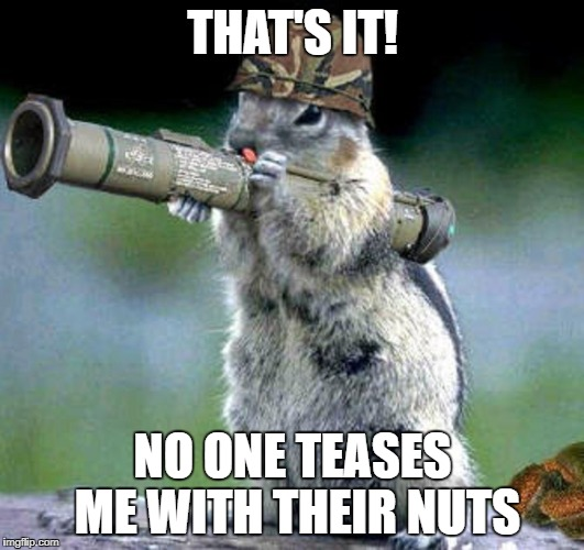 THAT'S IT! NO ONE TEASES ME WITH THEIR NUTS | made w/ Imgflip meme maker