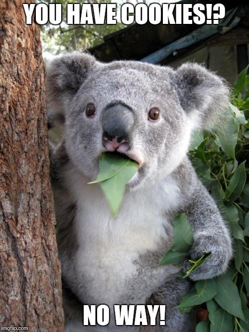 Surprised Koala Meme | YOU HAVE COOKIES!? NO WAY! | image tagged in memes,surprised koala | made w/ Imgflip meme maker