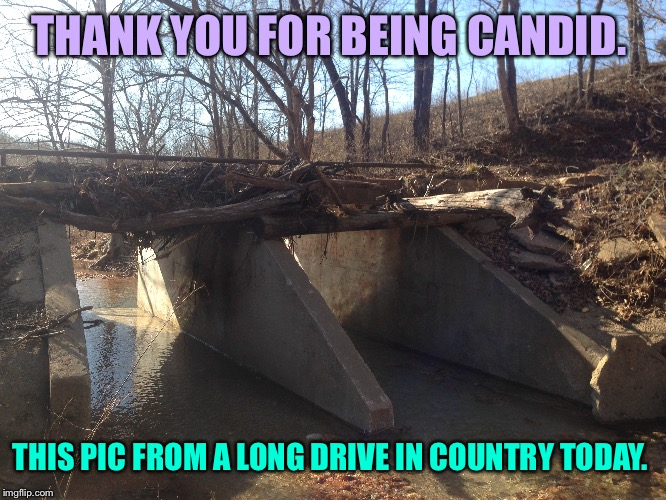 THANK YOU FOR BEING CANDID. THIS PIC FROM A LONG DRIVE IN COUNTRY TODAY. | made w/ Imgflip meme maker