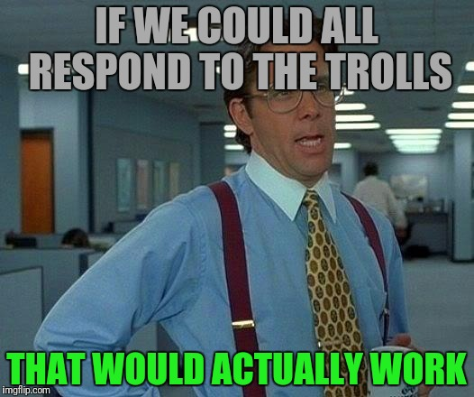 That Would Be Great Meme | IF WE COULD ALL RESPOND TO THE TROLLS THAT WOULD ACTUALLY WORK | image tagged in memes,that would be great | made w/ Imgflip meme maker