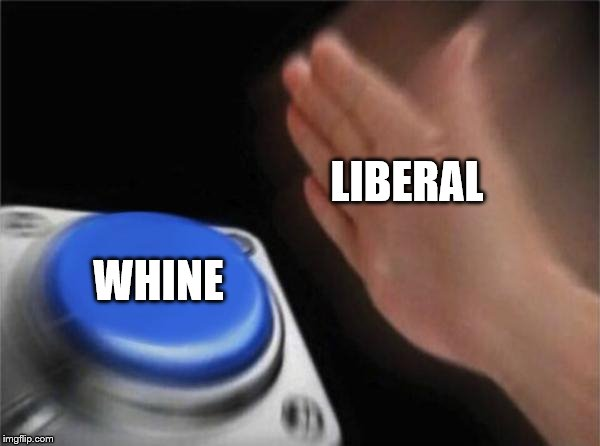 Blank Nut Button Meme | LIBERAL WHINE | image tagged in memes,blank nut button | made w/ Imgflip meme maker