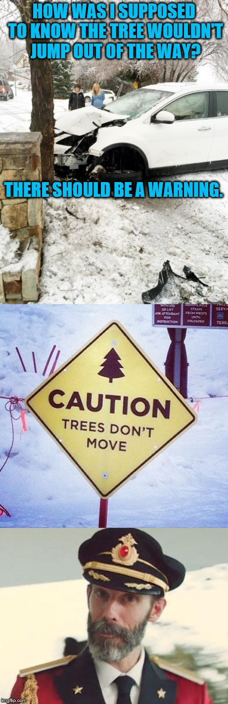 Is a sign really needed? |  HOW WAS I SUPPOSED TO KNOW THE TREE WOULDN'T JUMP OUT OF THE WAY? THERE SHOULD BE A WARNING. | image tagged in memes,captain obvious,caution sign,car accident | made w/ Imgflip meme maker