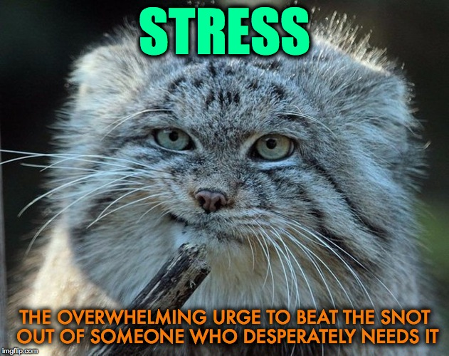 Another One Of Those Days... | STRESS THE OVERWHELMING URGE TO BEAT THE SNOT OUT OF SOMEONE WHO DESPERATELY NEEDS IT | image tagged in sigh | made w/ Imgflip meme maker