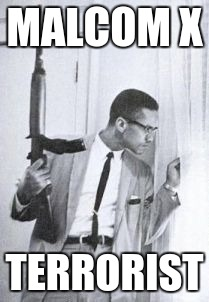 MALCOM X TERRORIST | image tagged in malcom x with carbine | made w/ Imgflip meme maker