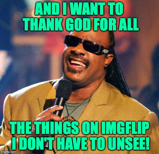 Thank You God! (as inspired by Raydog) | AND I WANT TO THANK GOD FOR ALL THE THINGS ON IMGFLIP I DON'T HAVE TO UNSEE! | image tagged in stevie wonder solar eclipse,memes,thank you god,imgflip,raydog | made w/ Imgflip meme maker
