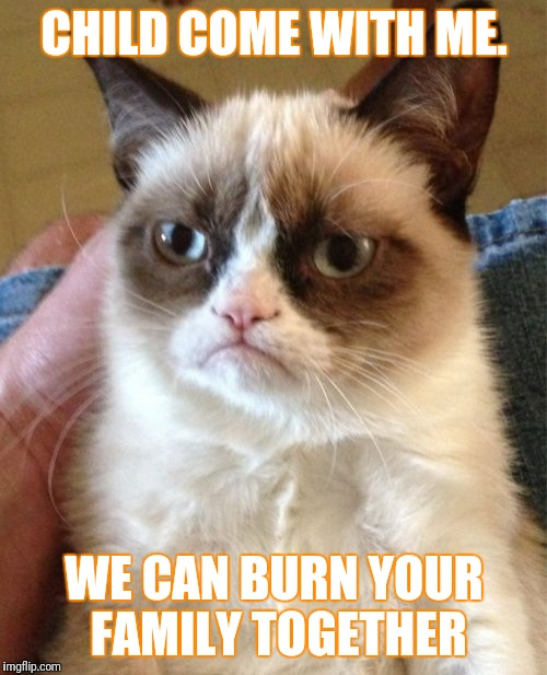 Grumpy Cat Meme | CHILD COME WITH ME. WE CAN BURN YOUR FAMILY TOGETHER | image tagged in memes,grumpy cat | made w/ Imgflip meme maker