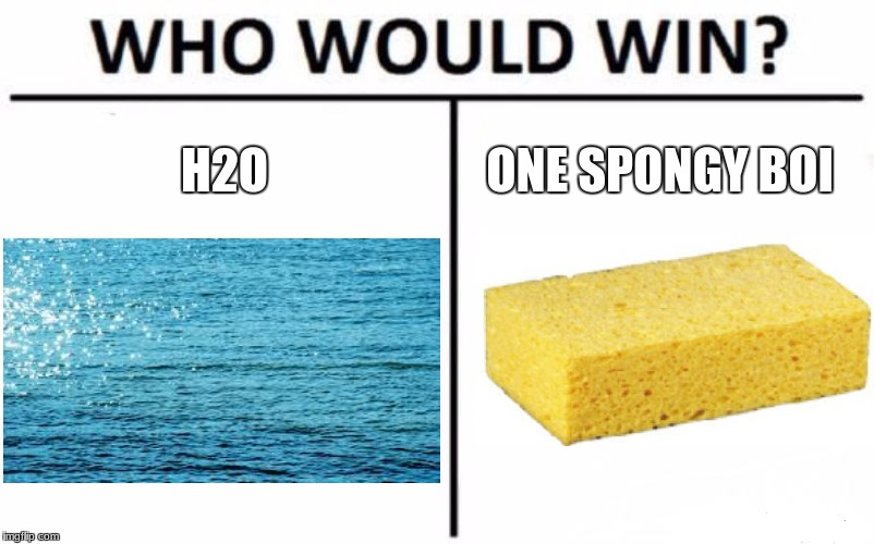 Who is more Superior? | H2O ONE SPONGY BOI | image tagged in memes,who would win | made w/ Imgflip meme maker