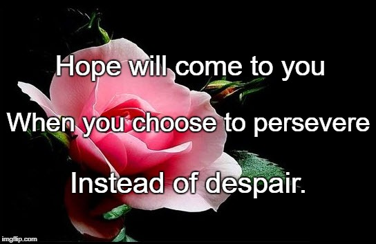 Hope will come to you Instead of despair. When you choose to persevere | image tagged in rose | made w/ Imgflip meme maker
