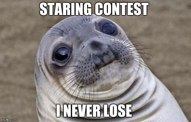 Awkward Moment Sealion Meme | STARING CONTEST I NEVER LOSE | image tagged in memes,awkward moment sealion | made w/ Imgflip meme maker