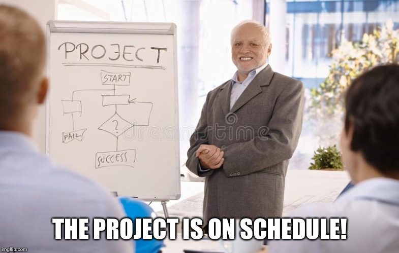 THE PROJECT IS ON SCHEDULE! | image tagged in hide the pain project manager,memes,ha ha its not | made w/ Imgflip meme maker