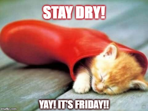 Stay Dry!  Sisskind Chiropractic | STAY DRY! YAY! IT'S FRIDAY!! | image tagged in sisskind chiropractic,yay,it's friday | made w/ Imgflip meme maker