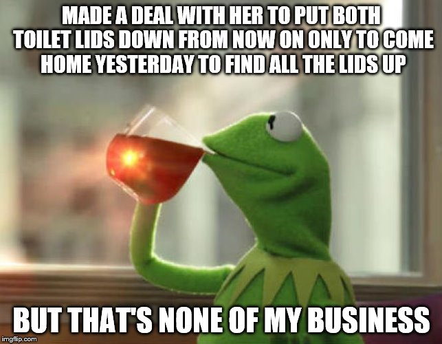 But Thats None Of My Business (Neutral) | MADE A DEAL WITH HER TO PUT BOTH TOILET LIDS DOWN FROM NOW ON ONLY TO COME HOME YESTERDAY TO FIND ALL THE LIDS UP BUT THAT'S NONE OF MY BUSI | image tagged in memes,but thats none of my business neutral | made w/ Imgflip meme maker