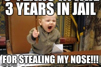 kid | 3 YEARS IN JAIL FOR STEALING MY NOSE!!! | image tagged in success kid | made w/ Imgflip meme maker