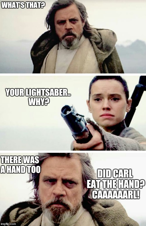 WHAT'S THAT? YOUR LIGHTSABER.. WHY? THERE WAS A HAND TOO DID CARL EAT THE HAND? CAAAAAARL! | image tagged in star wars,llamas with hats | made w/ Imgflip meme maker