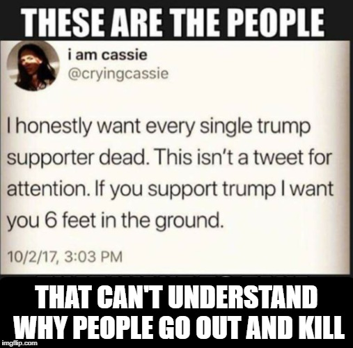 people equal Shit | THAT CAN'T UNDERSTAND WHY PEOPLE GO OUT AND KILL | image tagged in liberal logic | made w/ Imgflip meme maker