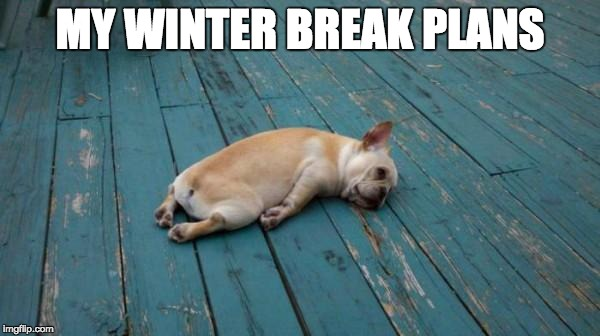 tired dog | MY WINTER BREAK PLANS | image tagged in tired dog | made w/ Imgflip meme maker