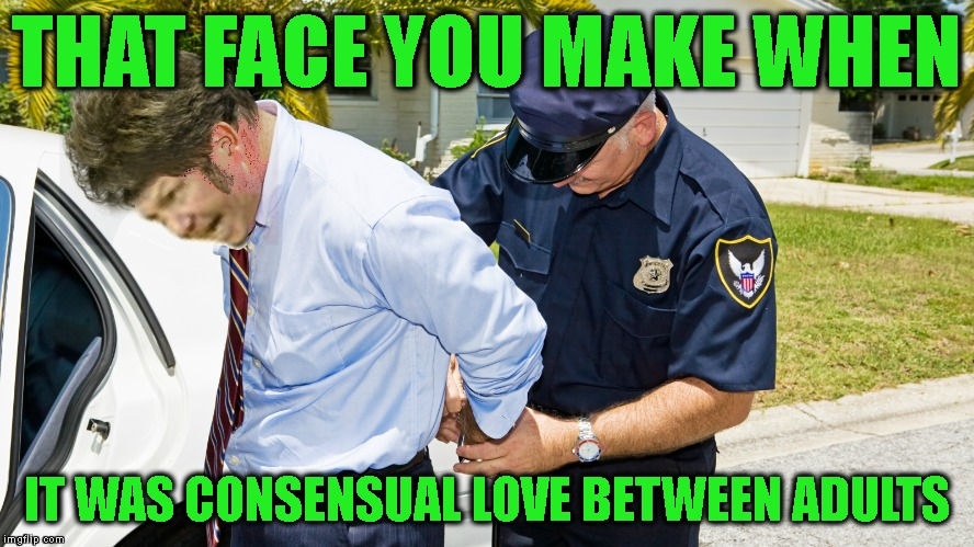 THAT FACE YOU MAKE WHEN IT WAS CONSENSUAL LOVE BETWEEN ADULTS | made w/ Imgflip meme maker