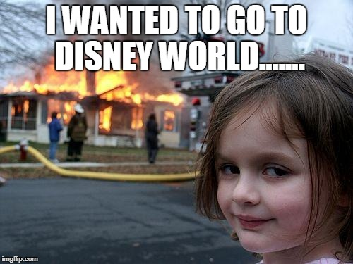 Disaster Girl Meme | I WANTED TO GO TO DISNEY WORLD....... | image tagged in memes,disaster girl | made w/ Imgflip meme maker