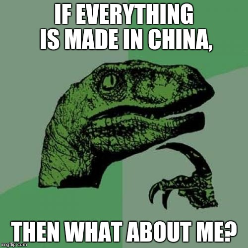 Philosoraptor Meme | IF EVERYTHING IS MADE IN CHINA, THEN WHAT ABOUT ME? | image tagged in memes,philosoraptor | made w/ Imgflip meme maker