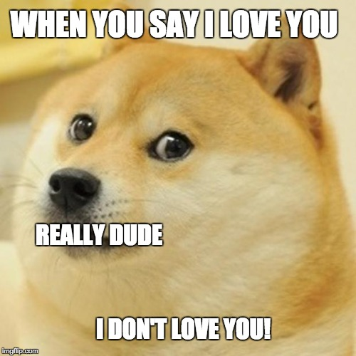 Doge Meme | WHEN YOU SAY I LOVE YOU I DON'T LOVE YOU! REALLY DUDE | image tagged in memes,doge | made w/ Imgflip meme maker