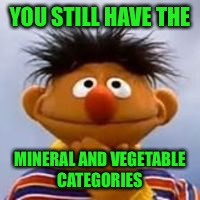 YOU STILL HAVE THE MINERAL AND VEGETABLE CATEGORIES | made w/ Imgflip meme maker
