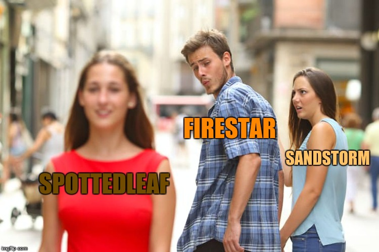 Warriors: Firestar's Romance Status in a Nutshell | SPOTTEDLEAF FIRESTAR SANDSTORM | image tagged in memes,distracted boyfriend,warrior cats,warrior cats meme,cats | made w/ Imgflip meme maker