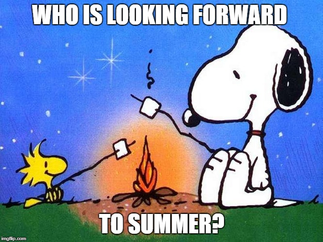 Anybody looking forward to summer? | WHO IS LOOKING FORWARD TO SUMMER? | image tagged in snoopy woodstock campfire,memes,summer,snoopy,summer memes | made w/ Imgflip meme maker