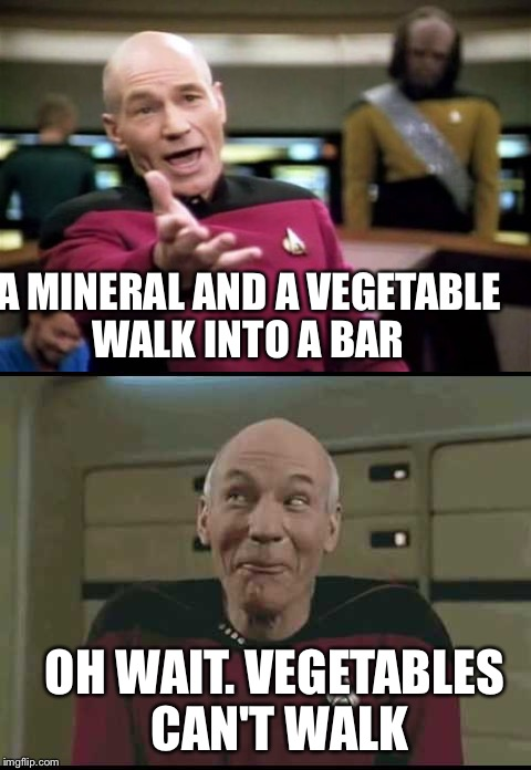 OH WAIT. VEGETABLES CAN'T WALK A MINERAL AND A VEGETABLE WALK INTO A BAR | made w/ Imgflip meme maker