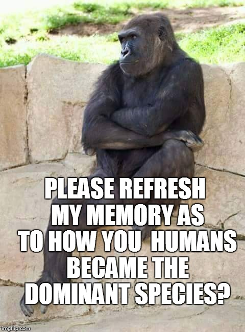 PLEASE REFRESH MY MEMORY AS TO HOW YOU  HUMANS BECAME THE DOMINANT SPECIES? | made w/ Imgflip meme maker