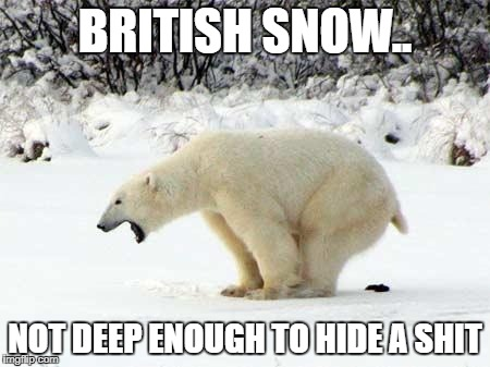 British Snow | BRITISH SNOW.. NOT DEEP ENOUGH TO HIDE A SHIT | image tagged in british,snow,weather,crap,shit,meme | made w/ Imgflip meme maker